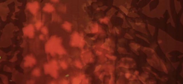 Screen Shot 2014-09-17 at 10.45.21 PM